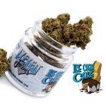 Cannabis Labels, Cannabis Label Printing, Cannabis Label Printers, Cannabis Label Printing Company